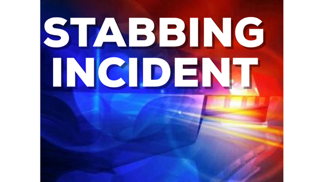Search For Stabbing Suspects